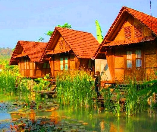 Desa Wisata Banjarasri  Kalibawang